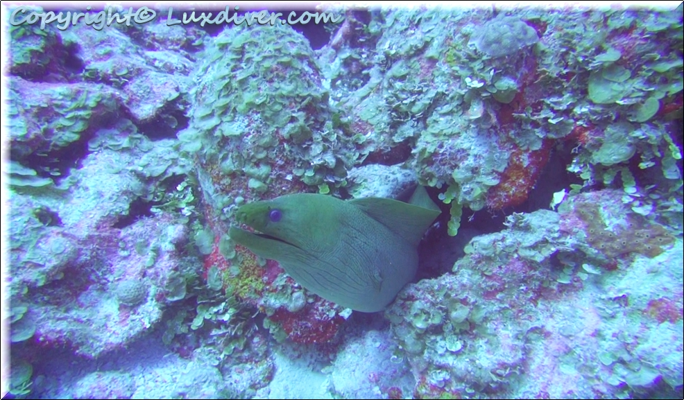 Moraine Chabil Mar Resort Belize