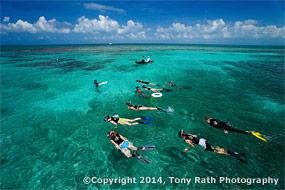 Tourist snorkeling