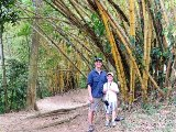 160 Heyer Chaa Creek Bamboo Trail Chabil Mar Belize Resort