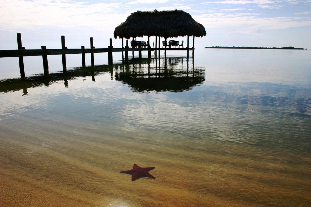 Chabil Mar Belize Resort Starfish and Pier