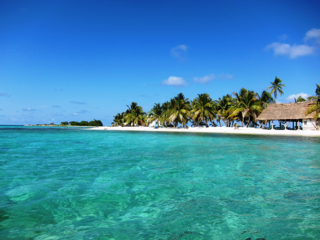 Find The Best Diving Spots in Placencia Belize