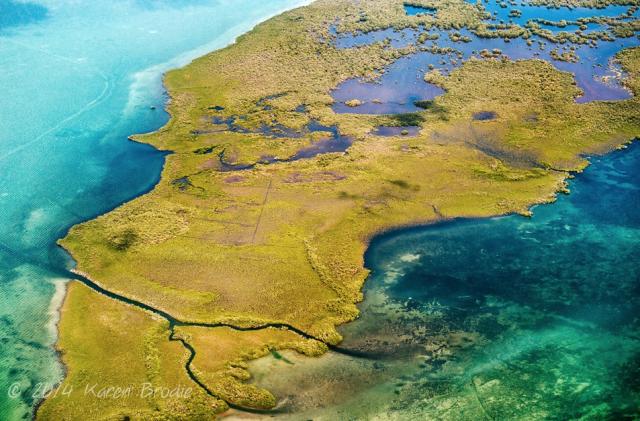 Stunning-Wetlands-5