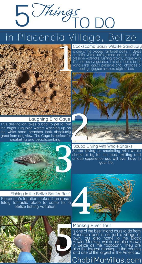 Infographics Placencia TOP-5