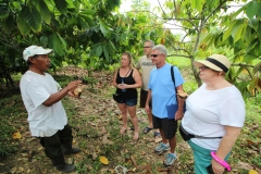 Chocolate and Spice Farm Educational Tours