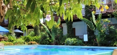 Dangling flowered vines adorn a Pergola to the Palm Tree Beach-Side Pool
