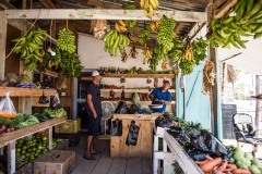 There are multiple vegetable stands in Placencia Village