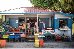 A Vegetable stand in Placencia Village