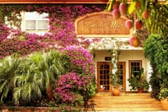 Welcome to Chabil Mar - Tropical Paradise - Incredible Garden Scenes
