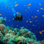 Top Ten Reasons to Love Belize for Scuba Diving