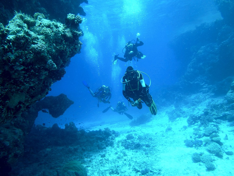 Why You Should Go Diving in Placencia Belize This Year